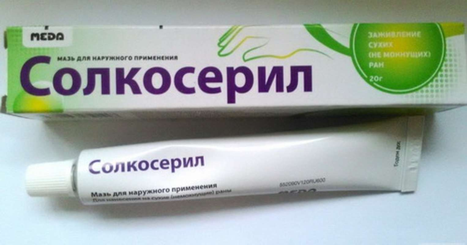 Solcoseryl ointment 20gr buy online